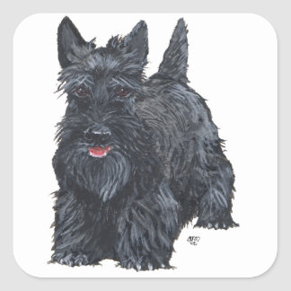 Playful Scottish Terrier Square Sticker