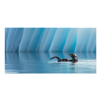 Playful Sea Otter Customized Photo Card