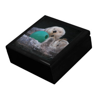 Playful Sea Otters Photo Gift Box