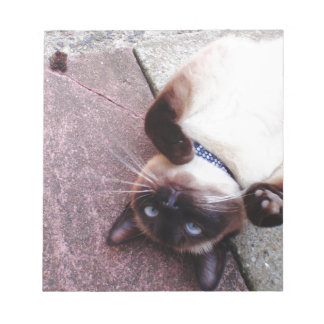 Playful Siamese Notepad