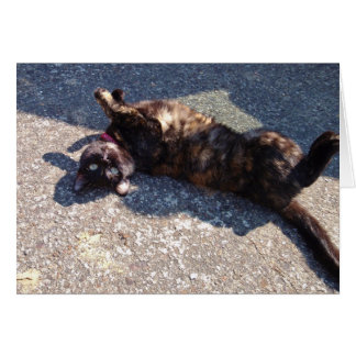 Playful Tortoiseshell Cat Card