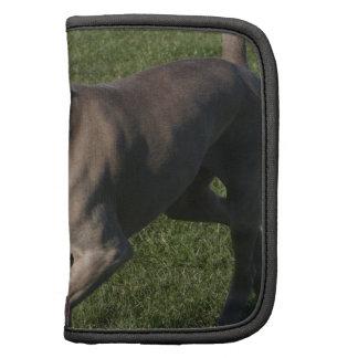 Playful Weimaraner Dog wallet Folio Planners