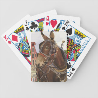 playing cards, mule poker deck