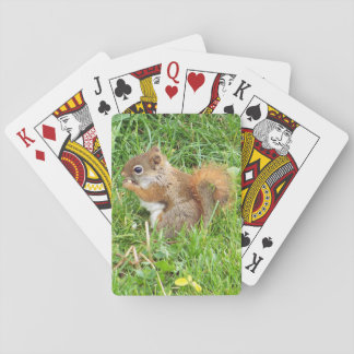 Playing Cards, Red Squirrel Theme Playing Cards