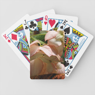 Playing Cards - Strawberry Splash
