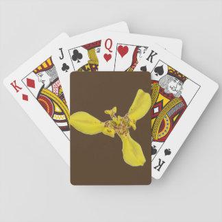 Playing Cards - Tiger Eye Iris