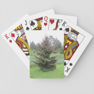 Playing Cards with Conifer Picture