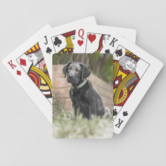 Playing Cards with front image of Labrador Puppy