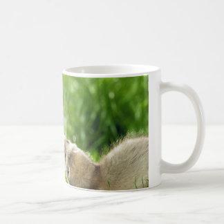 Playing ferret mug
