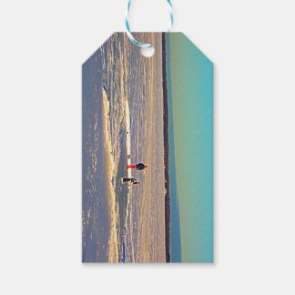 Playing on the ice gift tags