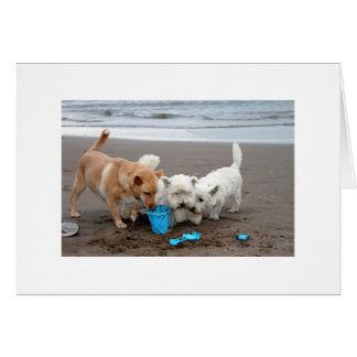 Playtime on the Beach Card