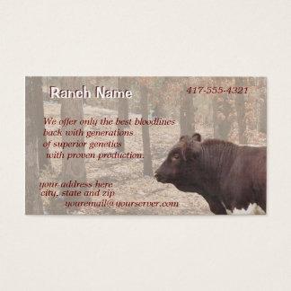 PLBBizCard-customize as needed Business Card