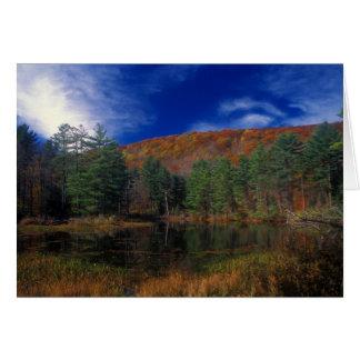 Pleasant Valley Wildlife Sanctuary Pike's Pond Card