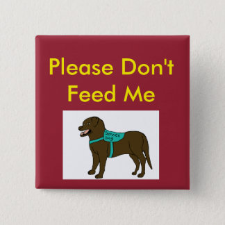 Please Dont Feed Me SD 2 Inch Square Button