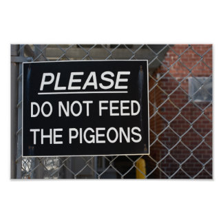 Please Don't Feed the Pigeons New York City NYC Poster