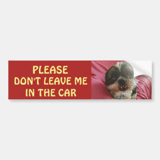 Please Don't Leave Dogs in A Hot Car Bumper Sticker