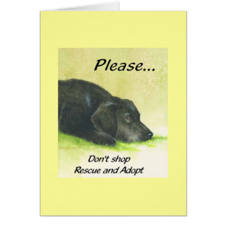 Please Don't Shop, Rescue and Adopt Note Card