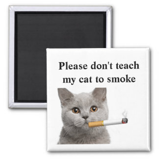 Please don't teach my cat to smoke square magnet