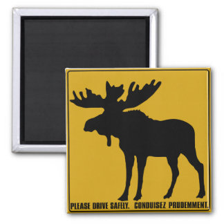 Please Drive Safely,  Traffic Sign, Canada Magnet