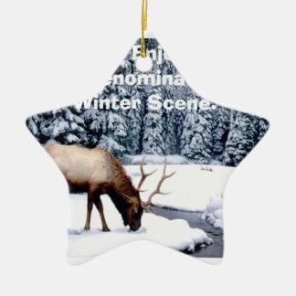 Please Enjoy This Nondenominational Winter Scene. Ceramic Star Ornament