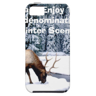 Please Enjoy This Nondenominational Winter Scene. iPhone 5 Cases
