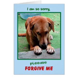 """Please Forgive Me"" greeting card"