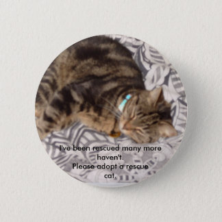 Please rescue a cat 2 inch round button