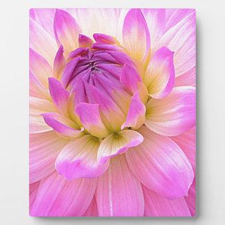Pleasing Purple Plaque
