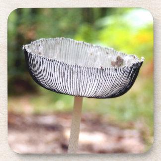 Pleated Inkcap Mushroom Hard Plastic Coasters