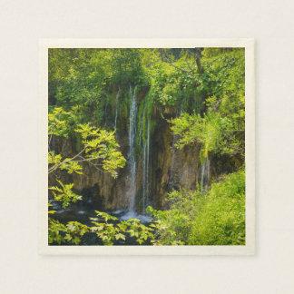 Plitvice Lakes National Park in Croatia Disposable Napkins