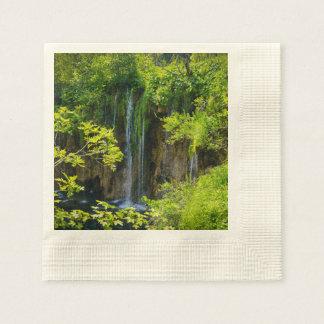 Plitvice Lakes National Park in Croatia Paper Napkin