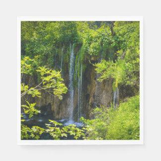 Plitvice Lakes National Park in Croatia Paper Napkins
