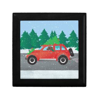 Plott Hound Dog Driving Christmas Car Gift Box