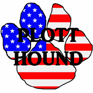 plott name usa-flag paw photo sculpture keychain