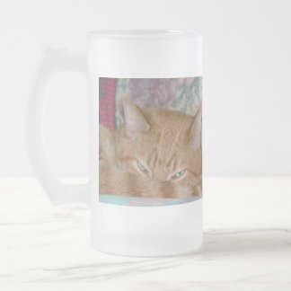 Plotting Frosted Glass Beer Mug