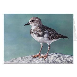 Plover Shore Bird Art Note Card