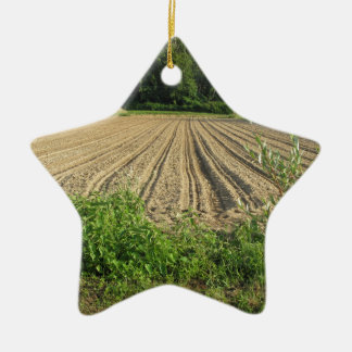 Plowed field in the late afternoon in Tuscany Ceramic Star Ornament