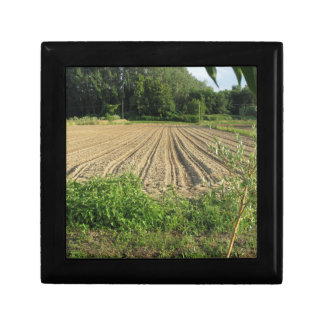 Plowed field in the late afternoon in Tuscany Keepsake Box