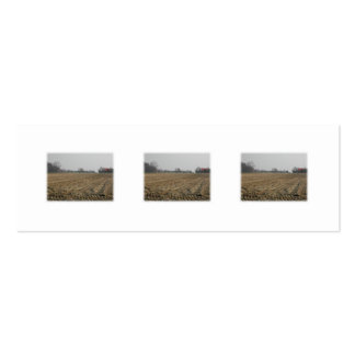 Plowed Field in Winter. Scenic. Double-Sided Mini Business Cards (Pack Of 20)