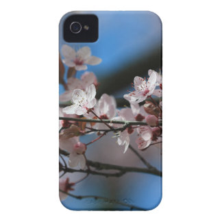 Plum blossom iPhone 4 cover