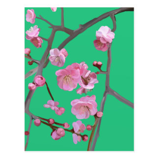plum blossom mint green postcard