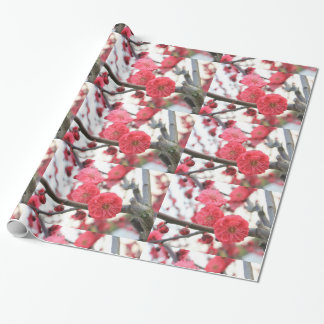 plum blossom spring pink flowers 2 wrapping paper