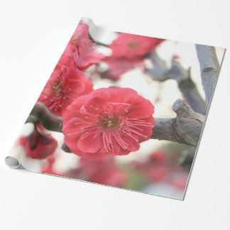 plum blossom spring pink flowers wrapping paper