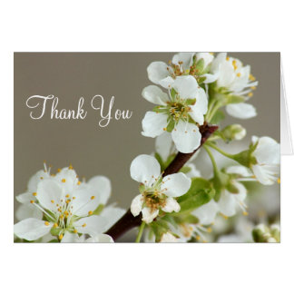 Plum Blossom Thank You Greeting Card
