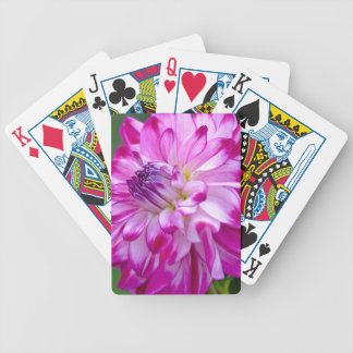 Plum Flora Bicycle Playing Cards