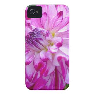 Plum Flora iPhone 4 Cover