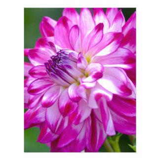 Plum Flora Letterhead