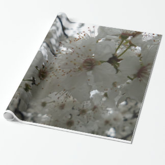 Plum Flower Glossy Wrapping Paper