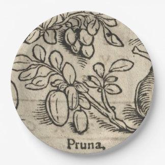 Plum Paper Plate