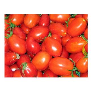 Plum Tomatoes Postcard